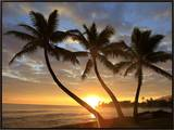 Sunrise  Windward Oahu  Hawaii