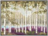 Plum Forest Floor