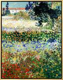 Garden in Bloom  Arles  c1888