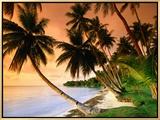 Blue Lagoon Resort Beach  Weno Centre  Micronesia