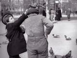 Enfants et Pigeons
