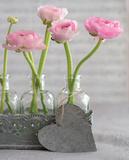 Composition Florale : Renoncules II