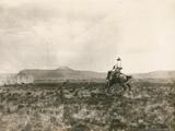 A Buck Jumper  1906
