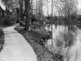 Claude Monet's (1840-1926) Garden at Giverny  1914