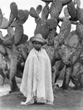 Boy in Front of a Cactus  State of Veracruz  Mexico  1927