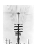 Telegraph Wires  Mexico  1925