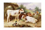 Calves and Poultry by a Byre  1922