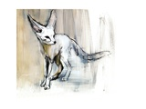 Sand Fox  2009