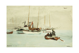Schooners at Anchor  Key West  1903