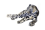 Recumbent (Arabian Leopard)  2008