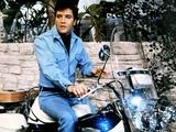 Clambake  Elvis Presley  Directed by Arthur Nadel  1967