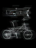 Bicycles in Motion
