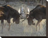 Moose Challenge
