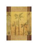 Palm Patterns I