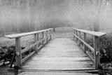 Mist Bridge