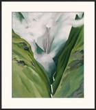 Waterfall No 3  'Iao Valley