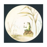 Toad Sitting on Rock in Pond  Card