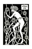 Hermaphrodite Amongst the Roses from Le Morte D'Arthur by Sir Thomas Malory  1894