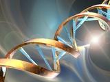 DNA Molecule  Artwork