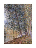 Autumn  the Banks of the Loing; L'Autumne  Bords Du Loing  1880