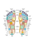 Reflexology Foot Map  Artwork