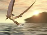 Pterosaur Fishing  Computer Artwork
