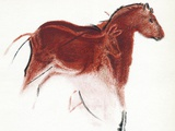 Cave Painting of Horse And Hind  Artwork
