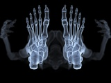 Skeleton From Below  X-ray Artwork