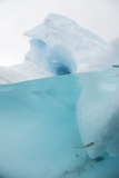 Antarctic Iceberg with Krill  Split View