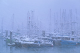 Fishing Boats In Harbour During a Blizzard