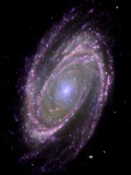 Spiral Galaxy M81  Composite Image