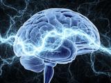 Human Brain  Conceptual Artwork