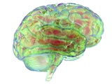 Human Brain computer Artwork