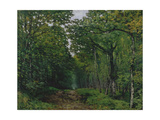 The Avenue of Chestnut Trees at La Celle-Saint-Cloud  1867