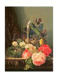 Still Life of Birds  Flowers and a Bird's Nest on a Table