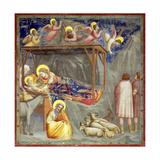 The Nativity  C1305