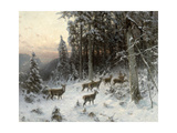 A Winter Evening in the Black Forest  C1880