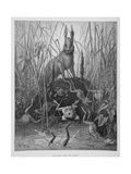 The Hare and the Frogs  from 'The Fables' of La Fontaine  Engraved by Stephane Pannemaker…