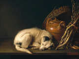 A Sleeping Dog with Terracotta Pot  1650