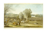 Coursing - a View of Hatfield Park  Engraved by James Pollard (1797-1867)