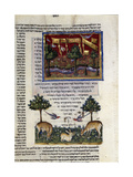 Fol80 from 'The Rothschild Miscellany'  Northern Italy  C1450-80