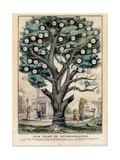 The Tree of Intemperance  Published by N Currier  New York  1849
