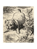 Alice Shrinks and Meets the Puppy  from 'Alice's Adventures in Wonderland' by Lewis Carroll …