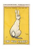 The Wild Rabbit Poster  1899