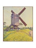 Kalf Mill  1894