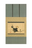 Pumpkin and Vine and Horse Fly  Edo Period  C1825