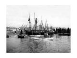 St Ives Harbour  C1880-99
