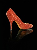 Stiletto by Salvatore Ferragamo  Owned by Marilyn Monroe