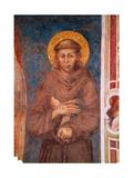 St Francis (Detail)