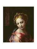 The Madonna (Detail)  C1518